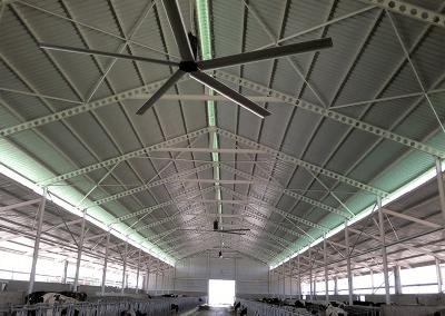 Plafondventilator koeienstal
